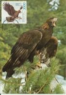 Carte Maximum - Oiseaux - Portugal - Aguia Real - Aigle Royal - Golden Eagle - Aquila Chrysaetus - Águilas & Aves De Presa