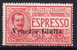 Italy Venezia Giulia 1919 Espressi Espresso Sassone#1 Mint Never Hinged - Venezia Giulia