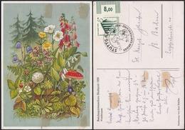 Germany - DR Sonderpostkarte 'Reich-Gartenschau STUTTGART', Mi. 692 EF + SST. Stuttgart 25.3.1939. - Duitsland