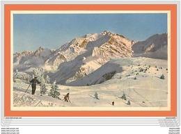 A633 / 455 Ski - Skieur - Cartoline