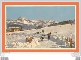 A633 / 453 Ski - Skieur - Cartoline