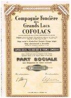 """Titre Ancien - Compagnie Foncière Des Grands Lacs """"COFOLACS""""  - Titre De 1956 - Afrika"""