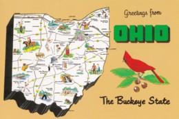 AN42 Postcard Map - Ohio, The Buckeye State - Carte Geografiche