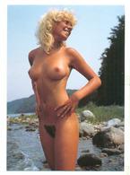 Akt Nude Erotik Nus Pin Up - Fine Nudes (adults < 1960)
