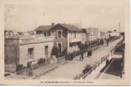 85 CROIX-de-VIE  L'Avenue De L'Océan - Saint Gilles Croix De Vie