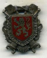 Insigne Sapeur Pompier, Département AVEYRON___A.B - Pompiers