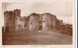 AS88 The Castle, Chepstow - RPPC - Monmouthshire