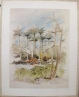 Ile De La Réunion. Francois HENNEQUET 1981 Les Cases -Espace. La Maison L'Etang à Savannah N° 3 - Autres Collections