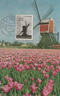 Carte Maximum - Moulin Des Polders - Oeuvres De Bienfaisance - Pays-Bas