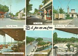 """Siponto, Manfredonia (Foggia) Vedute: P.za Daino, P.za S.Maria Maggiore, Ristorante """"la Conchiglia"""", Lungomare, Scorci - Manfredonia"""