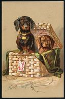 AK/CP Dackel  Teckel  Im Korb  Neujahrsgruß       Gel./circ.  1907   Erhaltung/Cond. 1-    Nr. 00851 - Cani