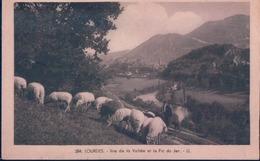 POSTAL LOURDES - VUE DE LA VALLEE ET LE PIC DU JER - LL - 384 - CIRCULADA - FRANCIA - Lourdes