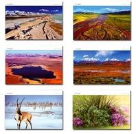2019 CHINA TP-40 VIEWS OF Cocoacili P-CARD 6V - Postcards