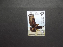Weißrussland    Vögel   2019   ** - Piciformes (pájaros Carpinteros)