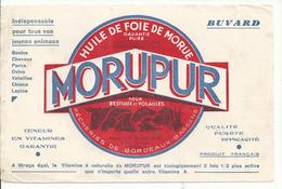 BUVARD .publicité MORUPUR - Animaux