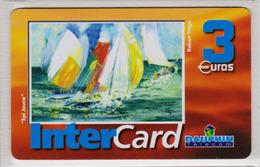 Antilles Françaises InterCard Dauphin 3 Euros 2 Scans N° 29 - Antillen (Frans)