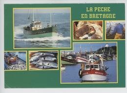 La Pêche En Bretagne : Retour, Tourteau Coquille Saint Jacques, Aquaculture Truite Saumonée, Thon (éd LD Multivues) - Pêche