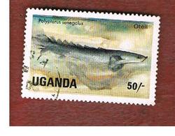 UGANDA   - SG 459   -  1985 LAKE FISHES: GRAY BICHIR      - USED ° - Uganda (1962-...)