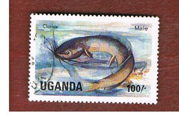 UGANDA   - SG 460   -  1985 LAKE FISHES: WALKING CATFISH      - USED ° - Uganda (1962-...)