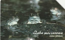POLONIA. FAUNA PROTEGIDA. Żaba Moczarowa - Rana Arvalis. 25U. 1354. (026) - Tarjetas Telefónicas