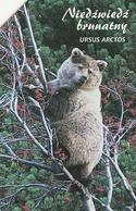 POLONIA. FAUNA PROTEGIDA. Eurasian Buzzard - Buteo Buteo. 25U. 1334. (021) - Tarjetas Telefónicas
