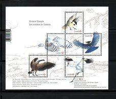 CANADA, 2018,BIRDS -III, M/S,  MNH**, - Uccelli