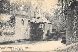 Cambron-Casteau NA5: Abbaye. Ruines Du Moulin - Brugelette