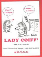 91 , SOISY-SUR-SEINE , Lady Coiff , Illustration De Barberousse  * M 23 41 - Francia
