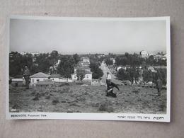 Judaica - REHOVOTH, Panoramic View - EDIT. ELIAHU BROS - JAFFA & TEL-AVIV. - Giudaismo