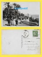 CPA ☺♦♦  MONACO - MONTE CARLO - Les Terrasses Du CASINO  ♦♦☺  1934 - Terrassen