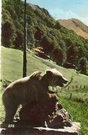L Hospice De France  Pres Luchon   Pyrenees - Bears