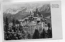 AK 0312  Semmering - Südbahnhotel Mit Raxalpe / Verlag Anderle Um 1930-50 - Semmering
