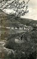 48* LE PONT DE MONTVERT   CPSM (petit Format)                 MA93,1253 - Le Pont De Montvert