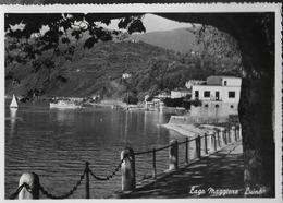 LOMBARDIA - LUINO - LAGO MAGGIORE - EDIZ. REGGIORI - NUOVA ORIGINALE D'EPOCA - Luino