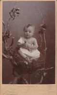Photo. C.D.V. : Portrait - Enfant : Bébé Assis Sur Une Chaise En Branchage : Photographie - BLAIN Fréres - Valence - 26 - Photographs