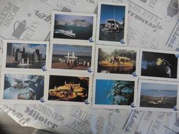 LOT  DE  10  CARTES  SUR  L  EXPEDITION  DU COMMANDANT  COUTEAU - Cartes Postales