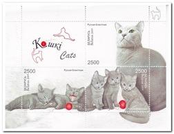 Wit Rusland 2009, Postfris MNH, Cats - Wit-Rusland