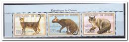 Guinee 1999, Postfris MNH, Cats - Guinee (1958-...)