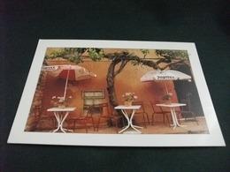 INSEGNA BIRRA BEER BIERE BELGE OMBRELLONE CAFFE' PHOTO DOMINIQUE ZINTZMEYER - Caffé