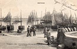Concarneau-barques De Peche Dans Le Port-bon état - Concarneau