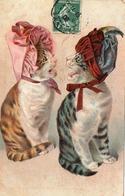 Chats Coiffés-humour - Katten