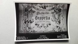 Foto Di Scena Del Teatro La Scala Di Milano - Coppelia - Stagione 1951-52 - Tanz