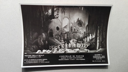 Foto Di Scena Del Teatro La Scala Di Milano - L'Uccello Di Fuoco - Quadro II - 01/02/1941 - Danse