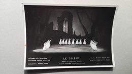 Le Silfidi - Stagione Della Scala 1949-50 - Danse