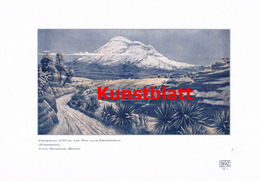 1184 Reschreiter: Anden Chimborazo Ecuador Farbdruck 1907 !! - Drucke
