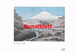 1186 Reschreiter: Anden Cotopaxi Ecuador Farbdruck 1907 !! - Drucke