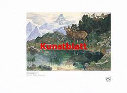 1190 Eugen L. Hoess Hirschbrunft Hirsch Berge Kunstblatt 1907!! - Drucke