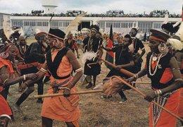 Kenya PPC Kikuyu Dancer, At Nairobi Airport 1977 TORSLANDA Sweden Meeresschnecken Sea Shell Stamps (2 Scans) - Kenia