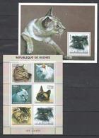 Guinea, 2002. [gu02117_18] Cats - Hauskatzen