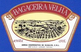 Brandy Label, Portugal - Aguardente Bagaceira Adega Cooperativa De Olhalvo / Alenquer - Labels